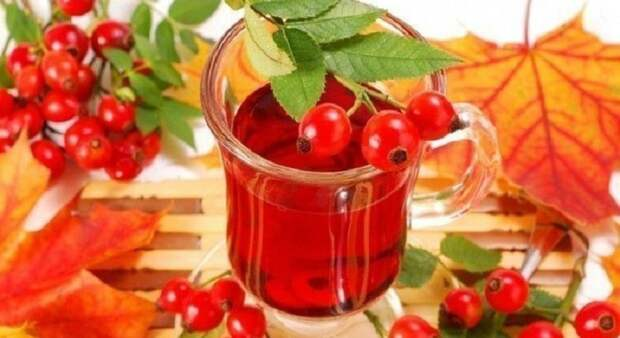 отвар шиповника при сахаре в крови