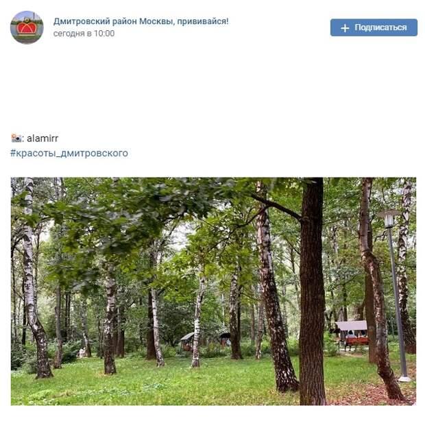 Фото дня: спокойствие и умиротворение парка «Вагоноремонт»