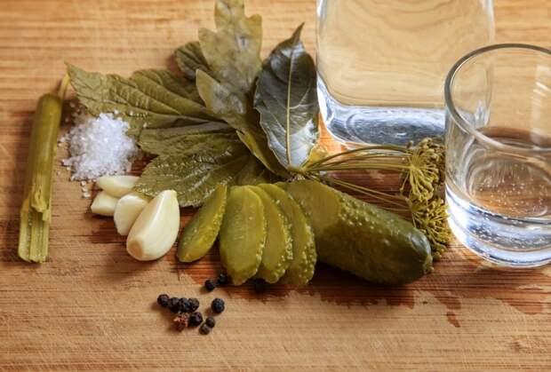 Как засолить огурцы? Несложные рецепты острых, чесночных, малосольных огурцов