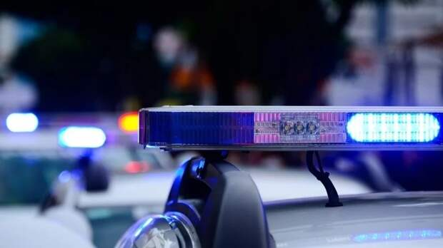 Полицейские не обнаружили взрывных устройств в «заминированных» школах Казани