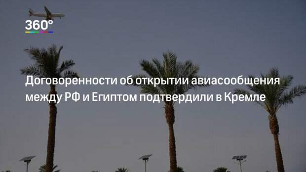 Договоренности об открытии авиасообщения между РФ и Египтом подтвердили в Кремле