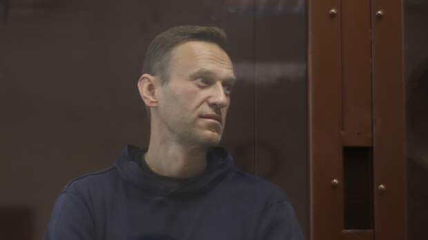Amnesty International использует Навального для влияния на патриотическую повестку