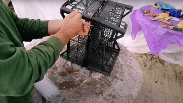 Креативная идея от дачника: полезное использование простого ящика