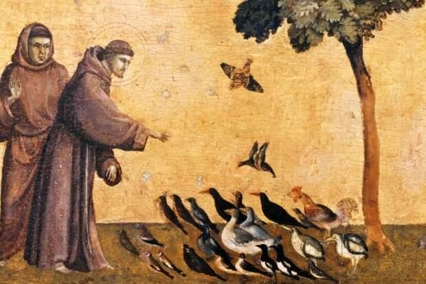 Франциск Ассизский - экологи, безбилетные пассажиры, купцы интернет, покровители, религия