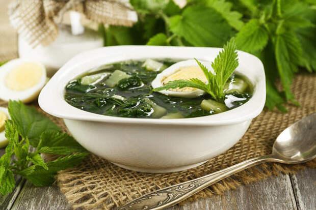 Готовим из свежей крапивы: 20 витаминных рецептов в вашу кулинарную книгу
