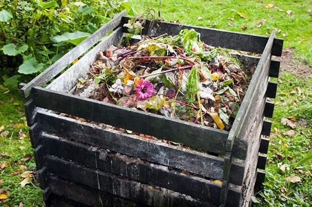 Доходы из отходов. Как правильно сделать компост?