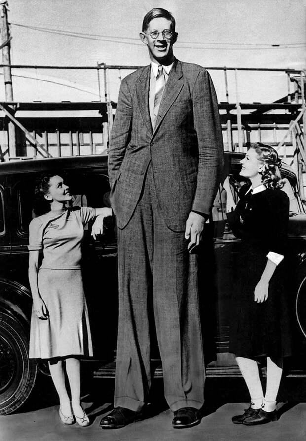 Рост 3 метра считали выдумкой, но на архивных фото и видео запечатлен великан выше. Мужчину звали Роберт Уодлоу