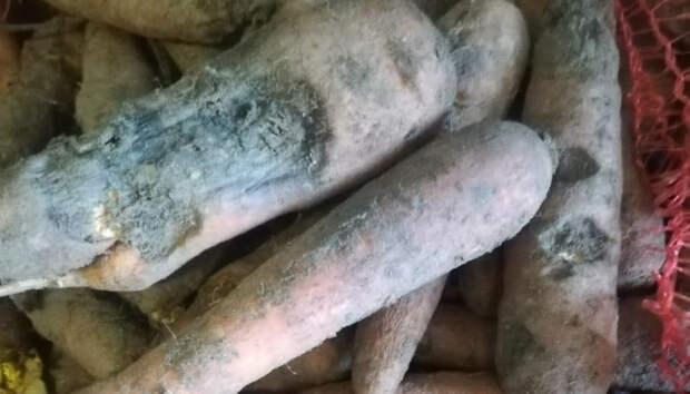 В детский сад в Петрозаводске завезли гнилые продукты
