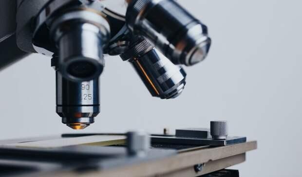 Самые распространенные виды онкологии назвали вРостовской области