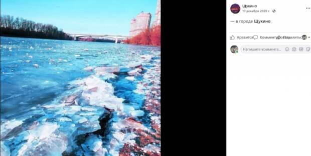 Фото дня: мозаика из льда