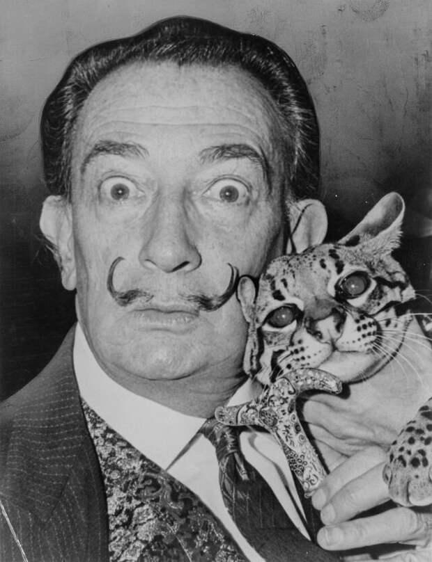 30 ретро-фотографий знаменитостей, позирующих слюбимыми кошками