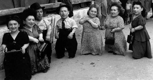Как карликовый рост помог семье евреев-музыкантов Овиц пережить эксперименты вОсвенциме