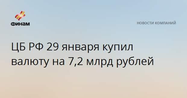 ЦБ РФ 29 января купил валюту на 7,2 млрд рублей