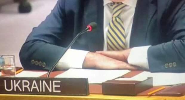 Оборванец: конфуз Украины в ООН — оторванная пуговица опозорила Киев