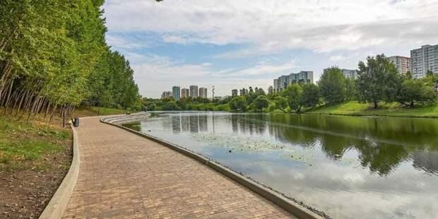 Москвичи станут помощниками разработчиков проектов благоустройства