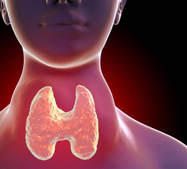 7 эфирных масел для щитовидной железы