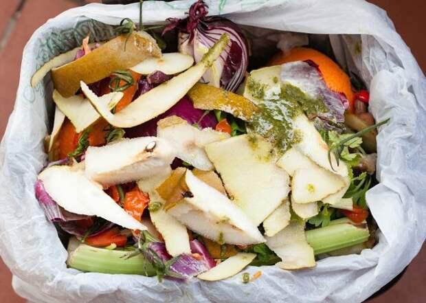 Пакет с компостом