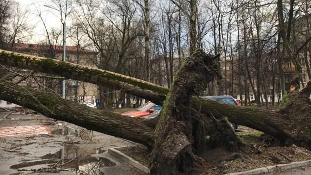 Власти Свердловской области объявили штормовое предупреждение