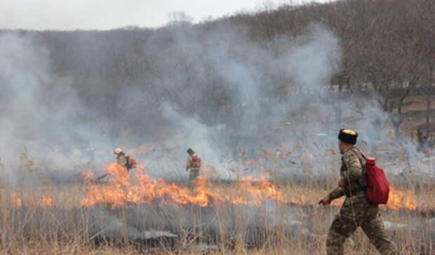 Идет подготовка: пожароопасный сезон наУрале рискует начаться ссередины апреля