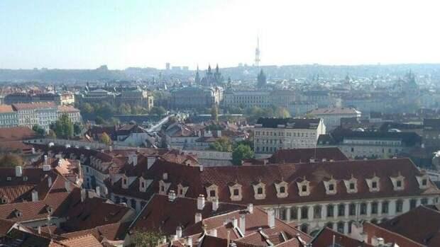 Местом проведения саммита Путина и Байдена могут стать Вена или Прага