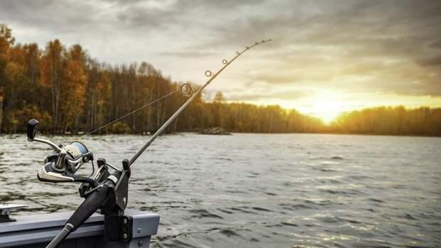 Составлен список лучших озер для рыбалки в Ленобласти