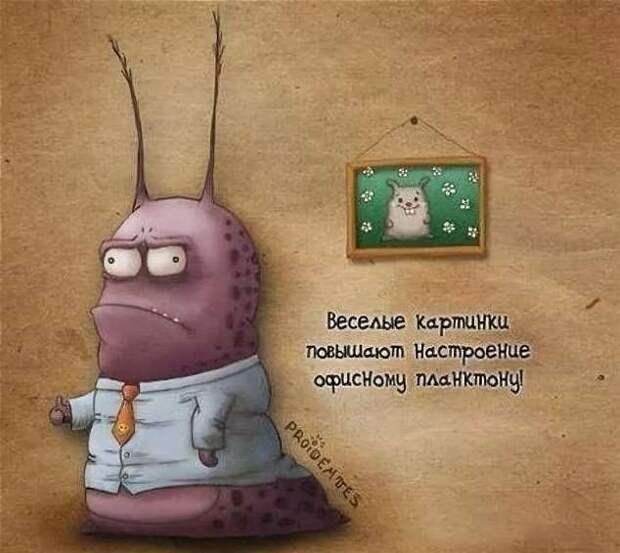 Неадекватный юмор из социальных сетей. Подборка chert-poberi-umor-chert-poberi-umor-21480812052021-15 картинка chert-poberi-umor-21480812052021-15