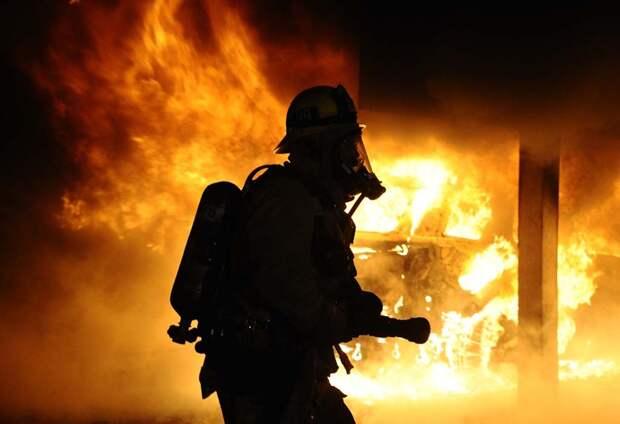 На пожарах в Крыму с начала года погибли 28 человек