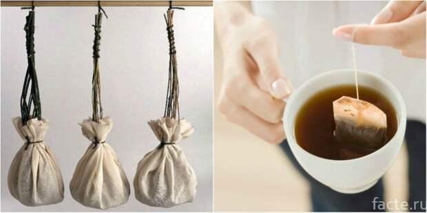 5. напиток, факты о чае, чай