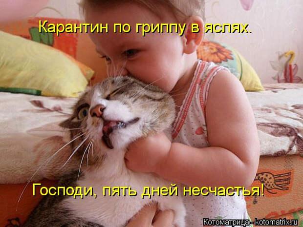 kotomatritsa_10 (640x480, 229Kb)