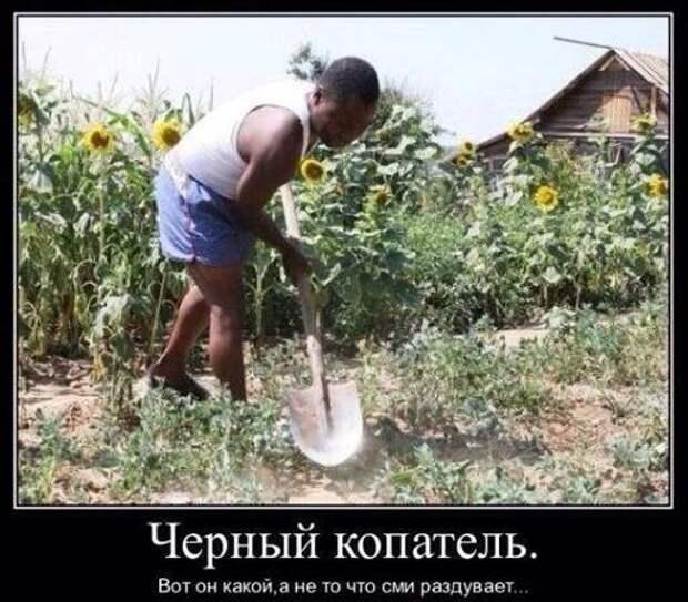 Сюжет про «Чёрных копателей» от канала Россия24 (прикол+) — Hobby ...