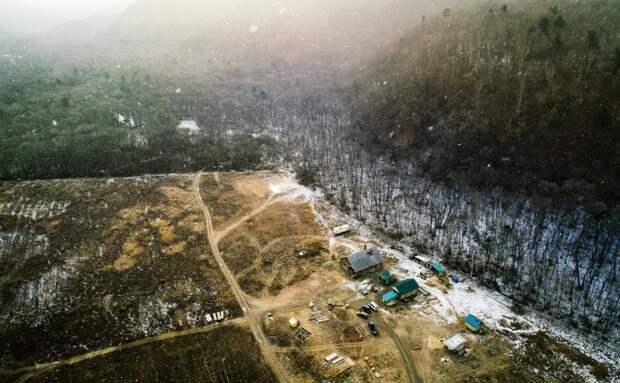 «Дальневосточный гектар» стал доступен переселенцам без гражданства