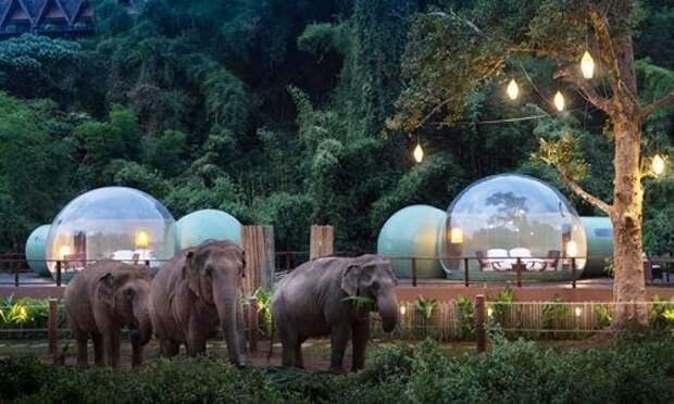 Таиланд: ночь в отеле-пузыре