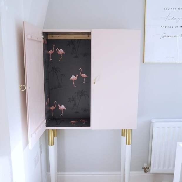 Фламинго живущие в шкафу