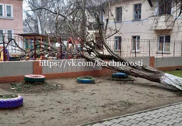 Ветер повалил огромное дерево на детсад в Керчи