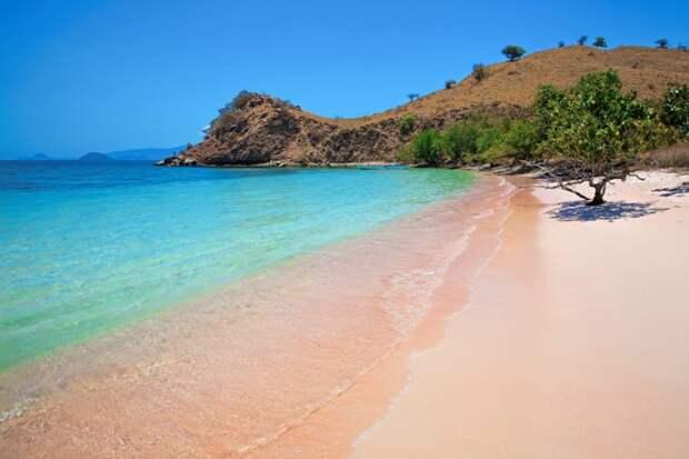 Завораживающий Розовый пляж Индонезии
