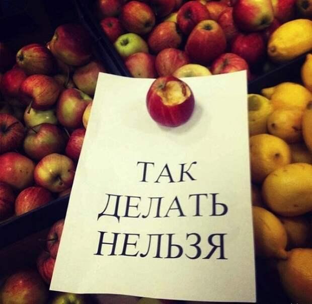 Картинки по запросу фото приколы с надписью ржака