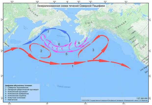 Забыли про Фукусиму? Придется вспомнить!