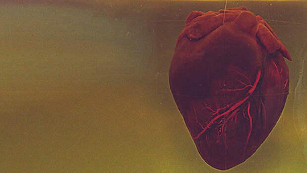 Современная кардиология. Могут ли роботы заменить реальных хирургов?