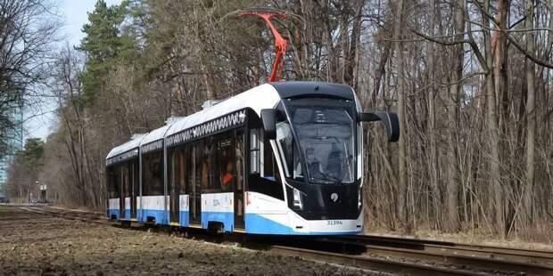 В Строгине вышли на маршруты новые трамваи «Витязь-Москва»