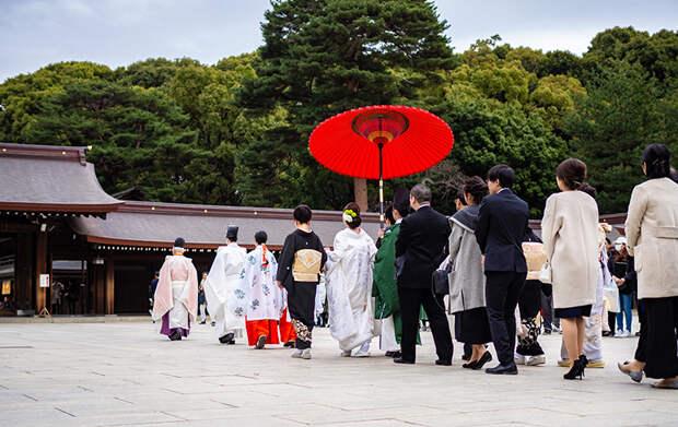 Как живут японцы и чему у них можно научиться (а чему не стоит)