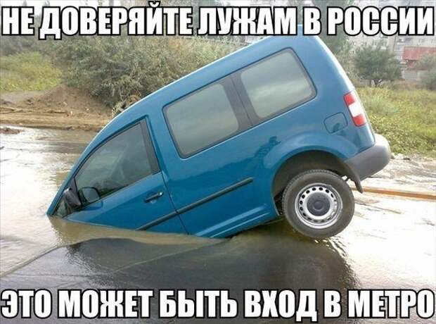 Шутки вокруг авто