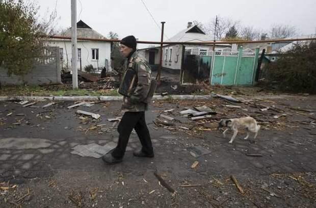 Собака спасла хозяина, приняв на себя осколок украинского снаряда