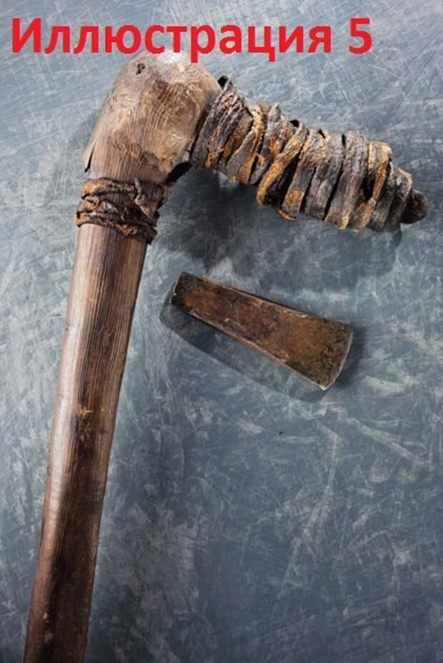 Подробно о несовместимости современного человека и неандертальца