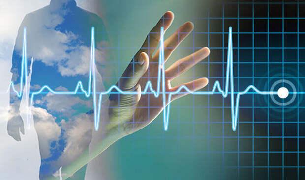 Мозг человека работает часами когда сердце уже остановилось и человек признан мертвым