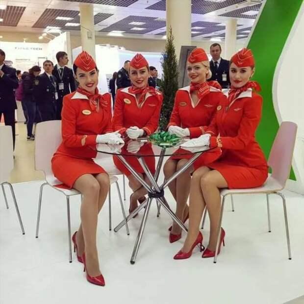 Ножки стюардесс. Подборка chert-poberi-styuardessy-chert-poberi-styuardessy-15060427022021-8 картинка chert-poberi-styuardessy-15060427022021-8