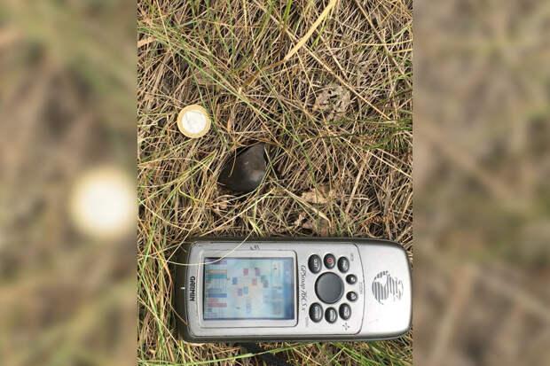 Ученые нашли обломок метеорита на севере Липецкой области