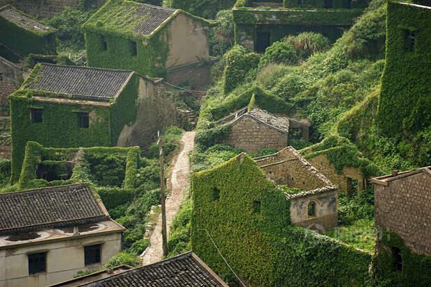 Китайскую деревню покинули люди, и уже через несколько лет ее почти полностью поглотила природа