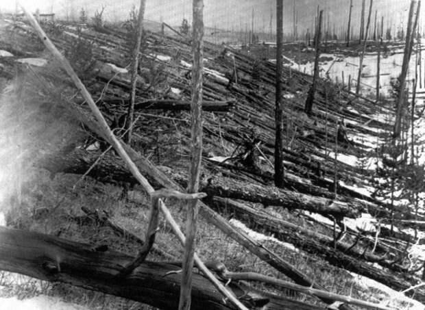 Тунгусский феномен: что советские ученые обнаружили в месте падения метеорита?
