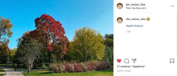 Фото дня: все краски лета в «Саду будущего»