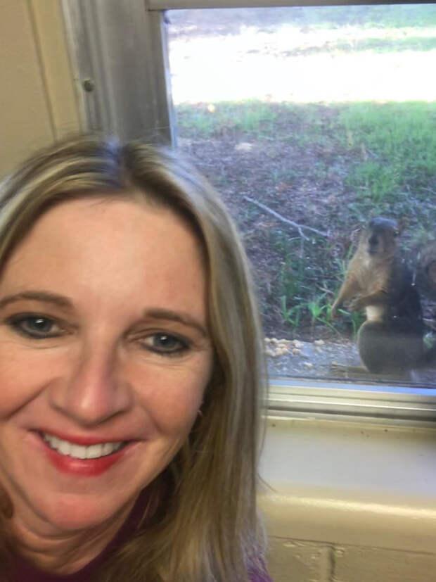 Белка без лапы несёт к окну своих малышей… В благодарность за чудесный поступок девушки!